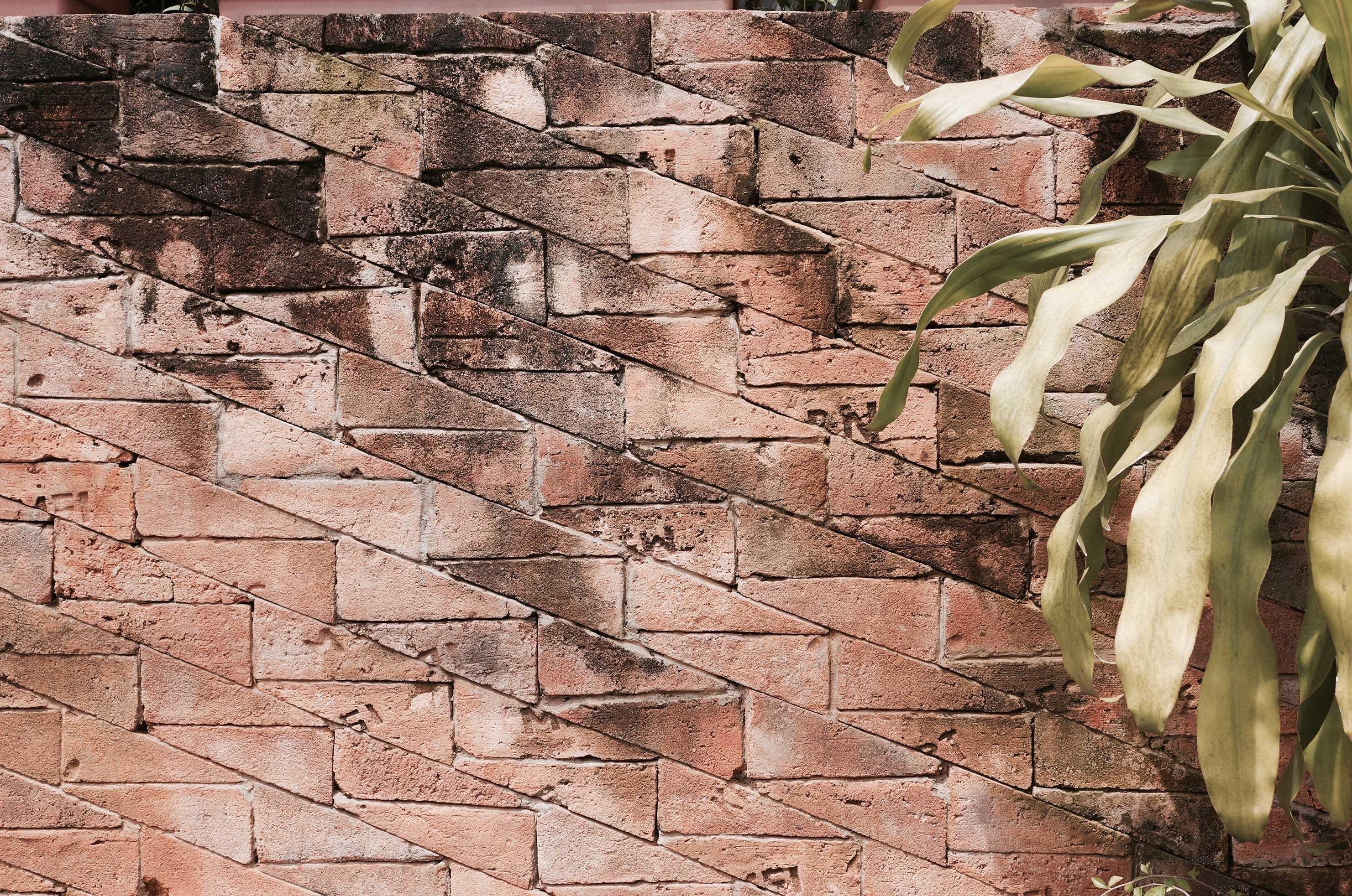 Ago Architects House At Jalan Parkit Jl. H. Toran, Rengas, Ciputat Tim., Kota Tangerang Selatan, Banten 15412, Indonesia Jl. H. Toran, Rengas, Ciputat Tim., Kota Tangerang Selatan, Banten 15412, Indonesia Ago-Architects-House-At-Jalan-Parkit   59808