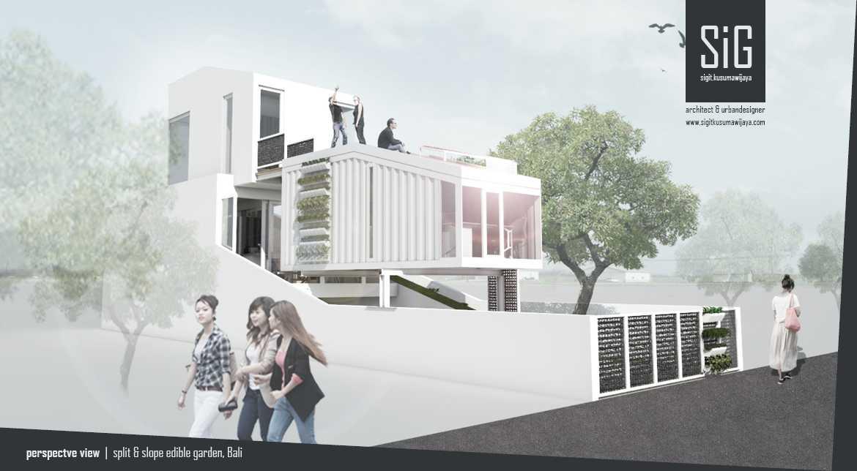 Sigit.kusumawijaya   Architect & Urbandesigner Split & Slope (Edible) Garden House Kota Denpasar, Bali, Indonesia Kota Denpasar, Bali, Indonesia Sigitkusumawijaya-Architect-Urbandesigner-Split-Slope-Edible-Garden-House   55050