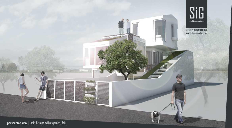 Sigit.kusumawijaya | Architect & Urbandesigner Split & Slope (Edible) Garden House Kota Denpasar, Bali, Indonesia Kota Denpasar, Bali, Indonesia Sigitkusumawijaya-Architect-Urbandesigner-Split-Slope-Edible-Garden-House   55051