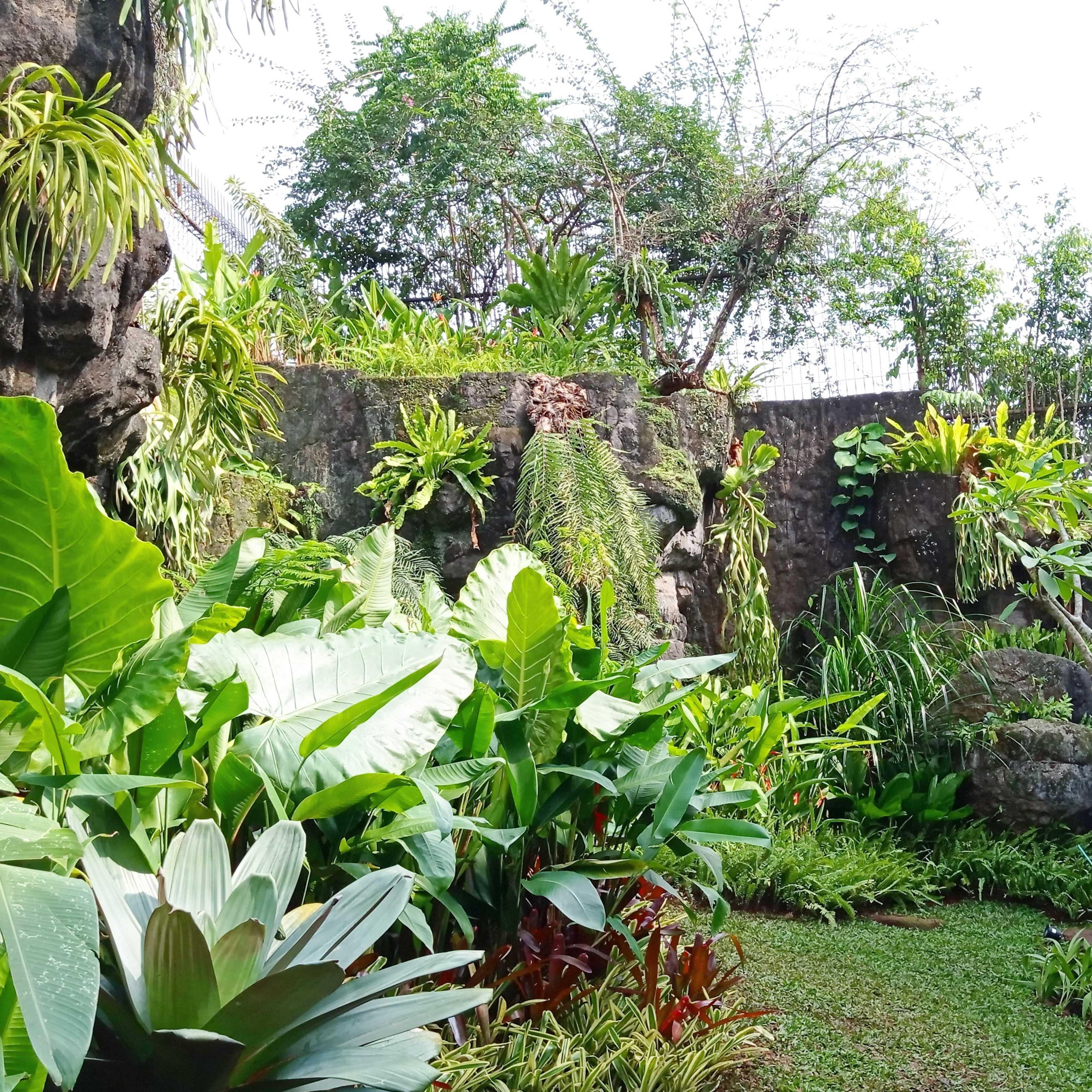 Greenxscape Raacha Suki & Bbq Bogor, Jawa Barat, Indonesia Bogor, Jawa Barat, Indonesia Greenxscape-Raacha-Suki-Bbq   110099