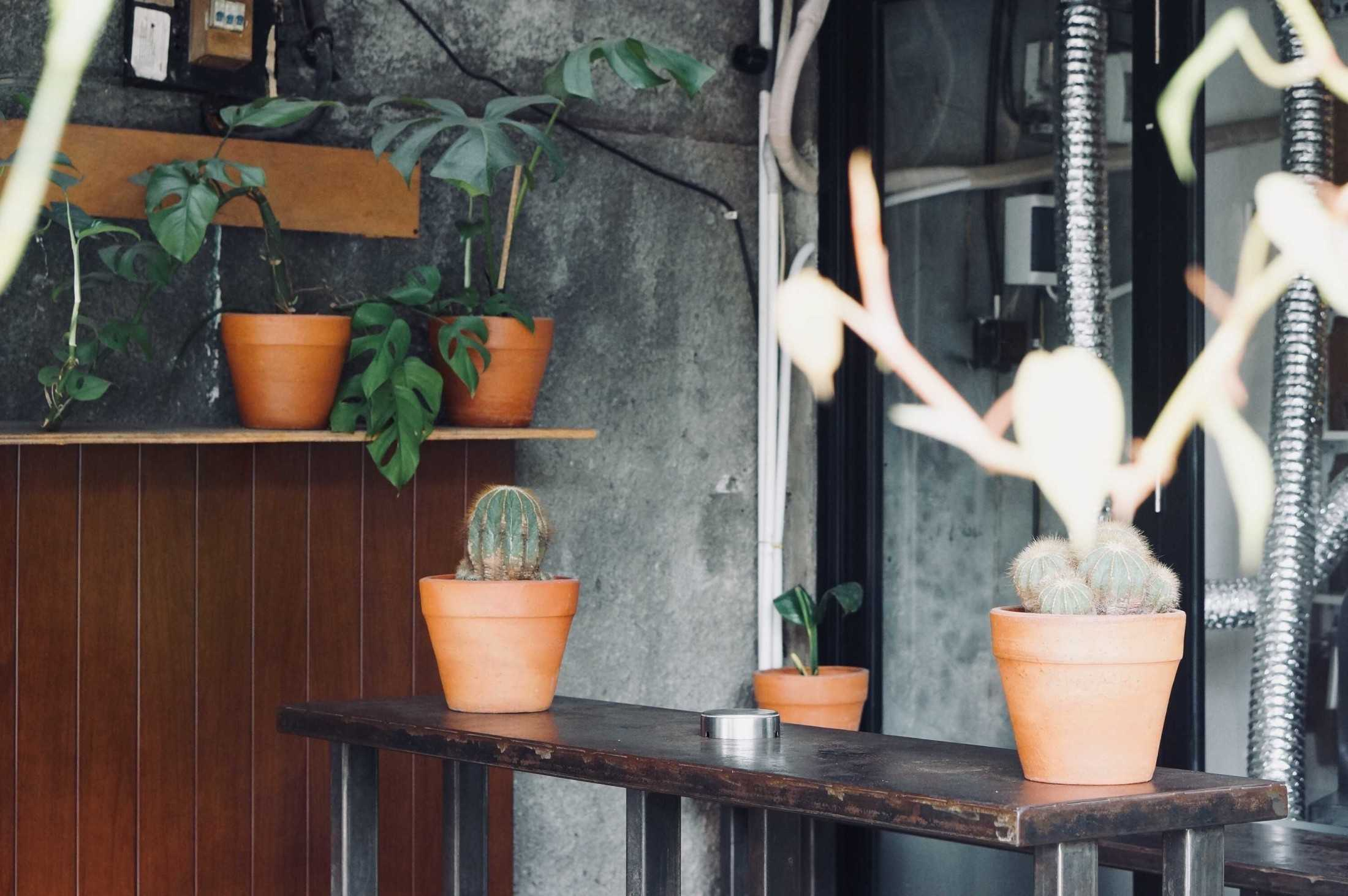 Ago Architects Kopi Sana  Jl. Panglima Polim V No.38, Rt.1/rw.7, Melawai, Kby. Baru, Jakarta, Daerah Khusus Ibukota Jakarta 12160, Indonesia Jl. Panglima Polim V No.38, Rt.1/rw.7, Melawai, Kby. Baru, Jakarta, Daerah Khusus Ibukota Jakarta 12160, Indonesia Ago-Architects-Kopi-Sana-  59801