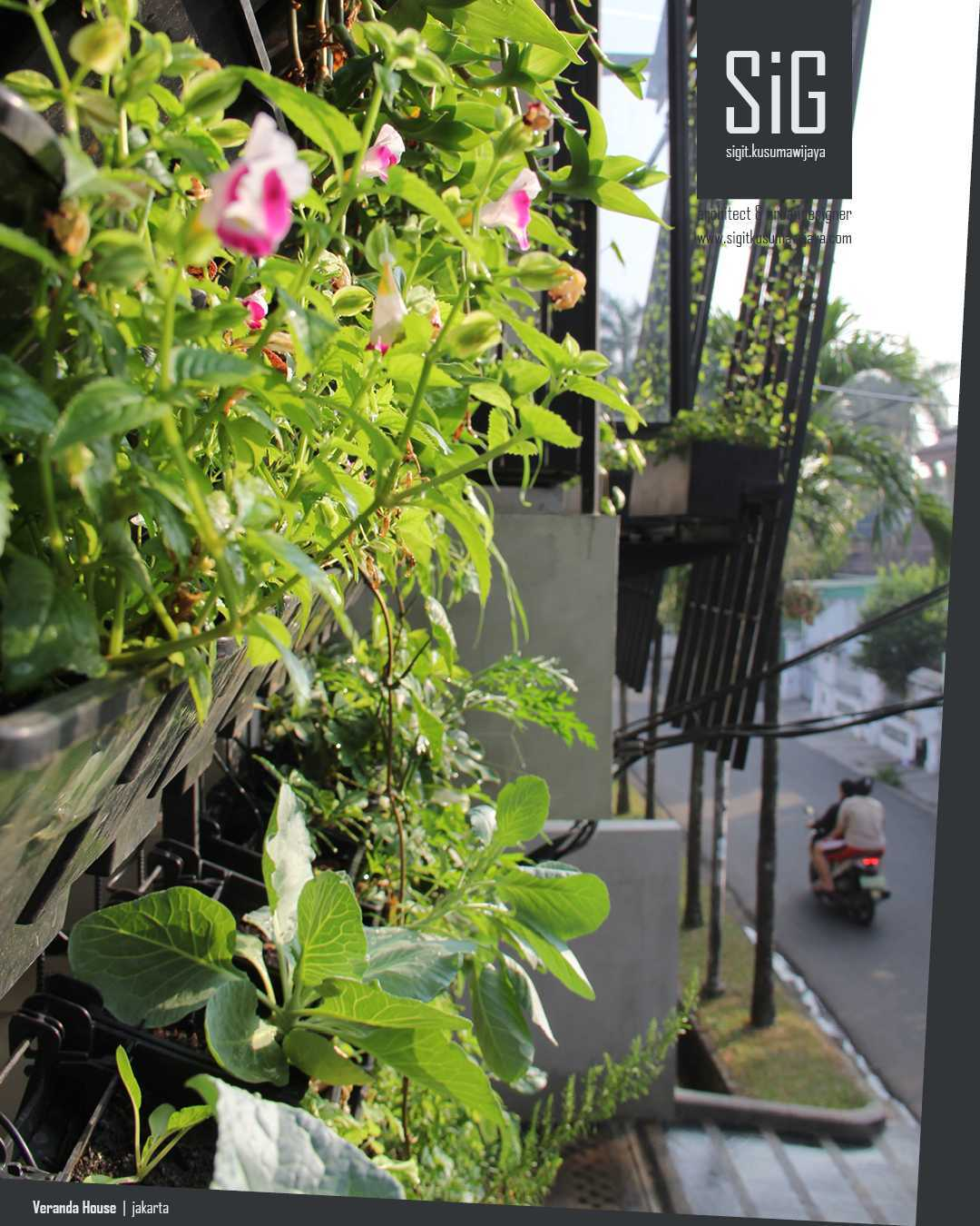 Sigit.kusumawijaya | Architect & Urbandesigner Rumah Beranda - Green Boarding House Cipete, South Jakarta, Indonesia Cipete, South Jakarta, Indonesia Sigitkusumawijaya-Architect-Urbandesigner-Rumah-Beranda-Green-Boarding-House Tropis 55009