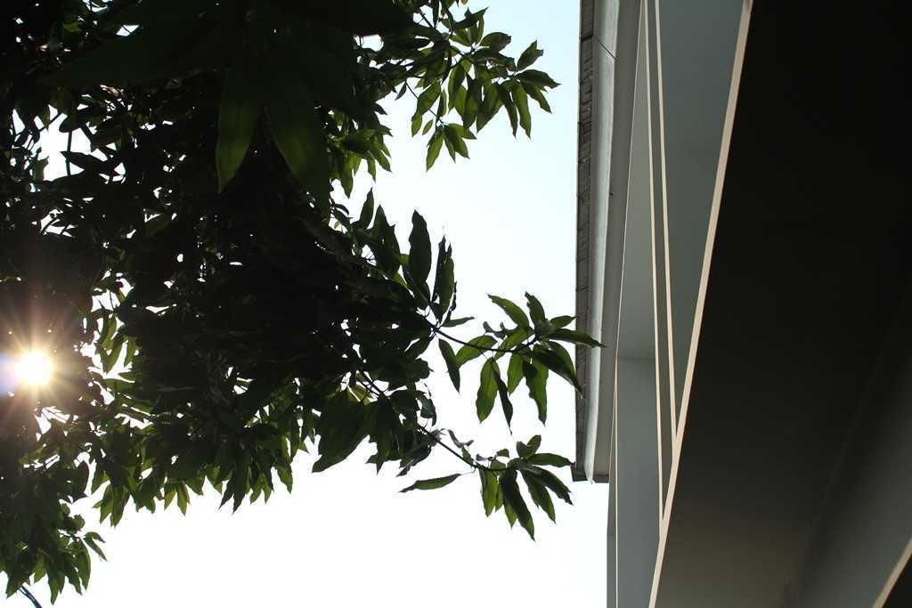 Dsi Architect Bw House Jl. Gr B. Utara Viii, Pd. Kacang Bar., Kec. Pd. Aren, Kota Tangerang Selatan, Banten, Indonesia Jl. Gr B. Utara Viii, Pd. Kacang Bar., Kec. Pd. Aren, Kota Tangerang Selatan, Banten, Indonesia Dsi-Architect-Bw-House  88803