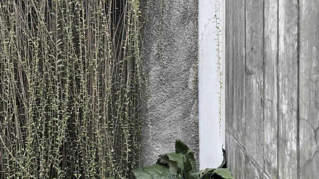 Adamar Koi Pond Kota Tgr. Sel., Kota Tangerang Selatan, Banten, Indonesia Kota Tgr. Sel., Kota Tangerang Selatan, Banten, Indonesia Adamar-Design-And-Build-Koi-Pond  123115