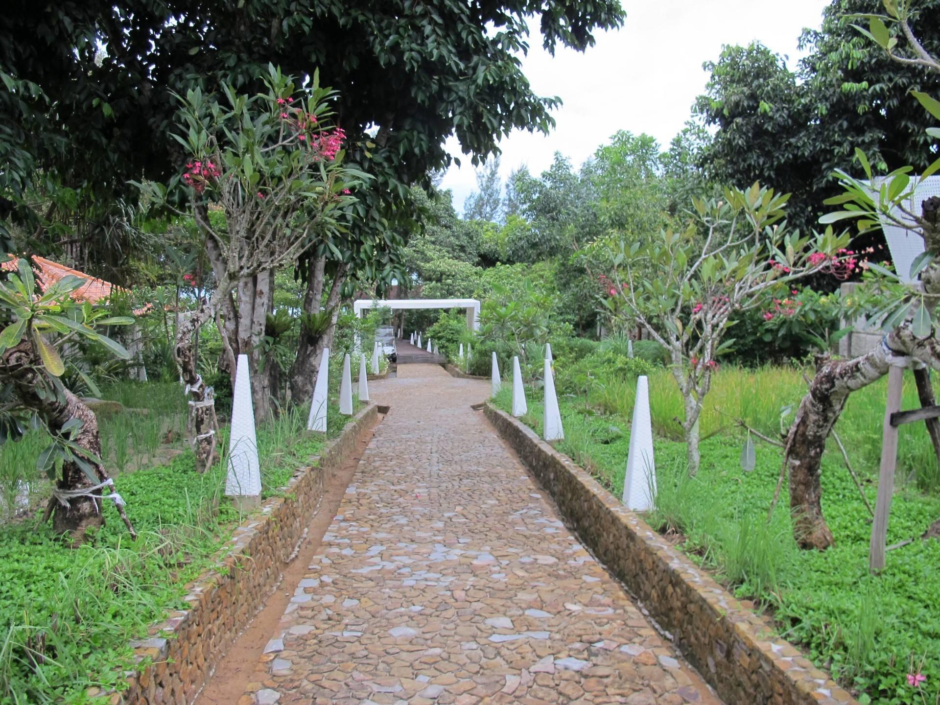Raw Architecture Arumdalu Belitung Belitung Walkway Tropis  1639