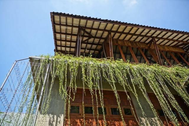 Akanoma Yu Sing Samsara Pictures Production House South Jakarta, Indonesia South Jakarta, Indonesia Hanging-Plants Tropis  4181