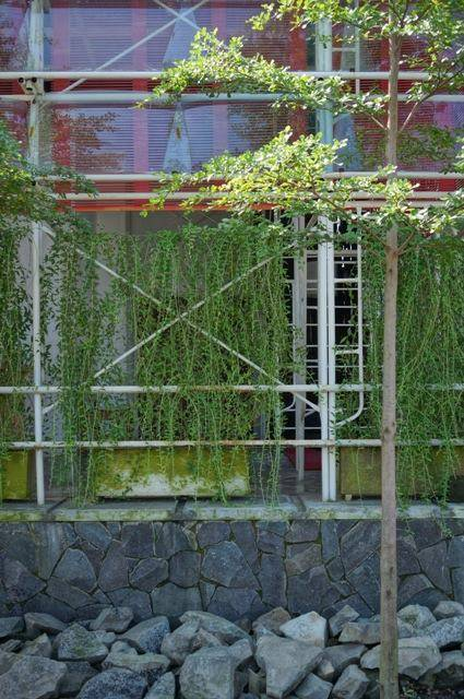 Akanoma Yu Sing Samsara Pictures Production House South Jakarta, Indonesia South Jakarta, Indonesia Fence-Plants Tropis  4206