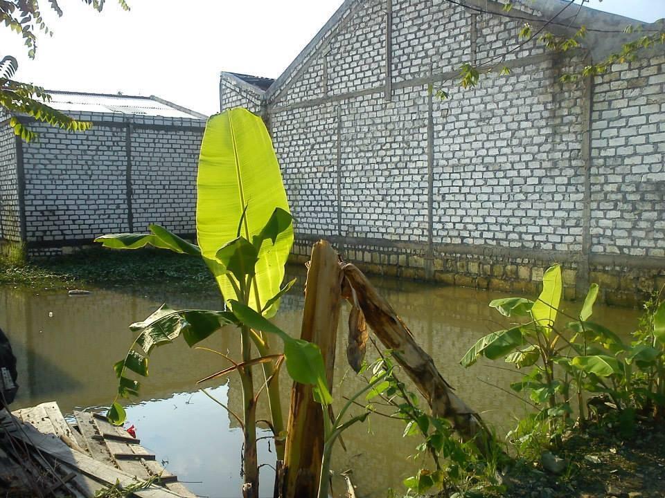Akanoma Yu Sing Floating House At Benowo Surabaya, East Java, Indonesia Surabaya, East Java, Indonesia Terrain Kontemporer  4224