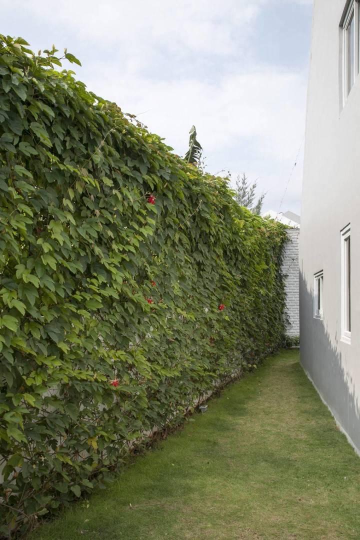 Sontang M Siregar Dj House Bengkulu, Indonesia Bengkulu, Indonesia Green-Fence Minimalis  6040