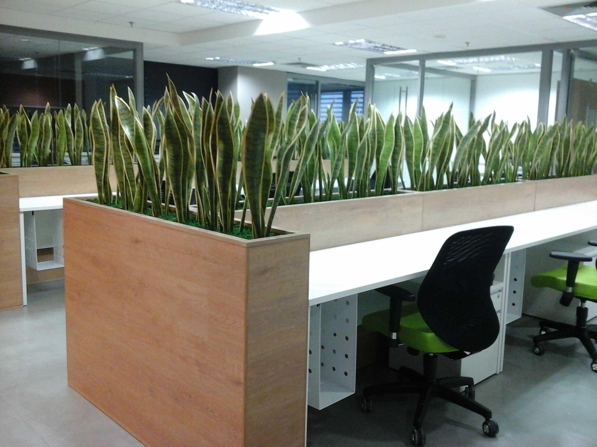 Pt. Indodesign Kreasi Mandiri Office Fresh Grow International Jakarta Jakarta Photo-28127 Modern  28127