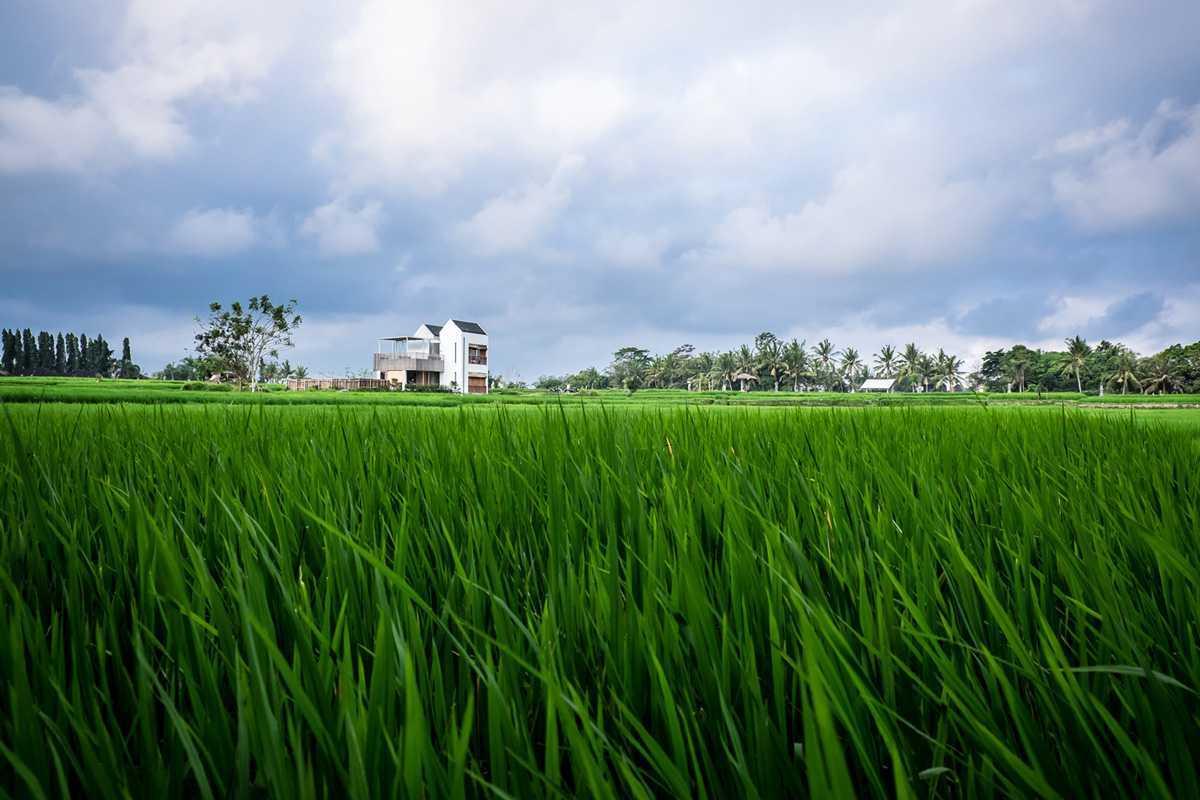Dform Casa Avana Ubud, Kabupaten Gianyar, Bali, Indonesia Ubud, Kabupaten Gianyar, Bali, Indonesia Aerial View Minimalist  43575
