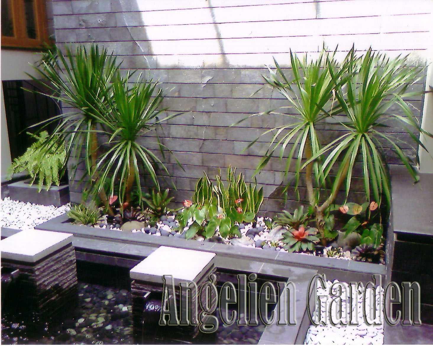 Reindy Tropical Modern Garden Bandung Bandung C Modern,tropis  28439