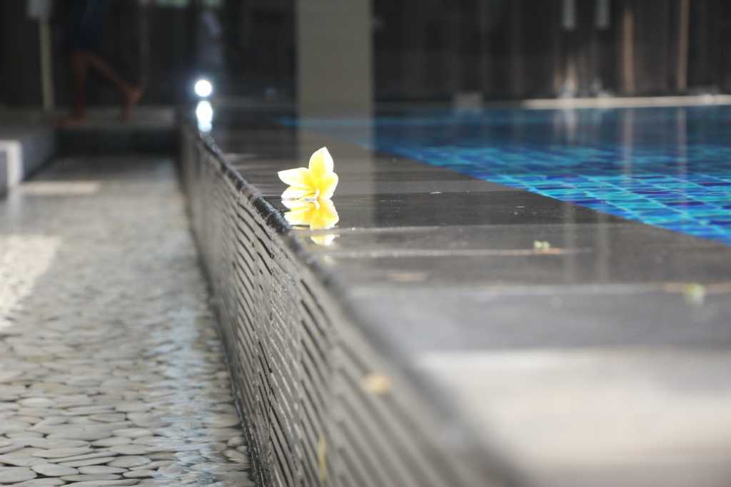 Paulus Adi Budianto Rumah Tinggal Semarang Semarang Swimming Pool Detail   10959