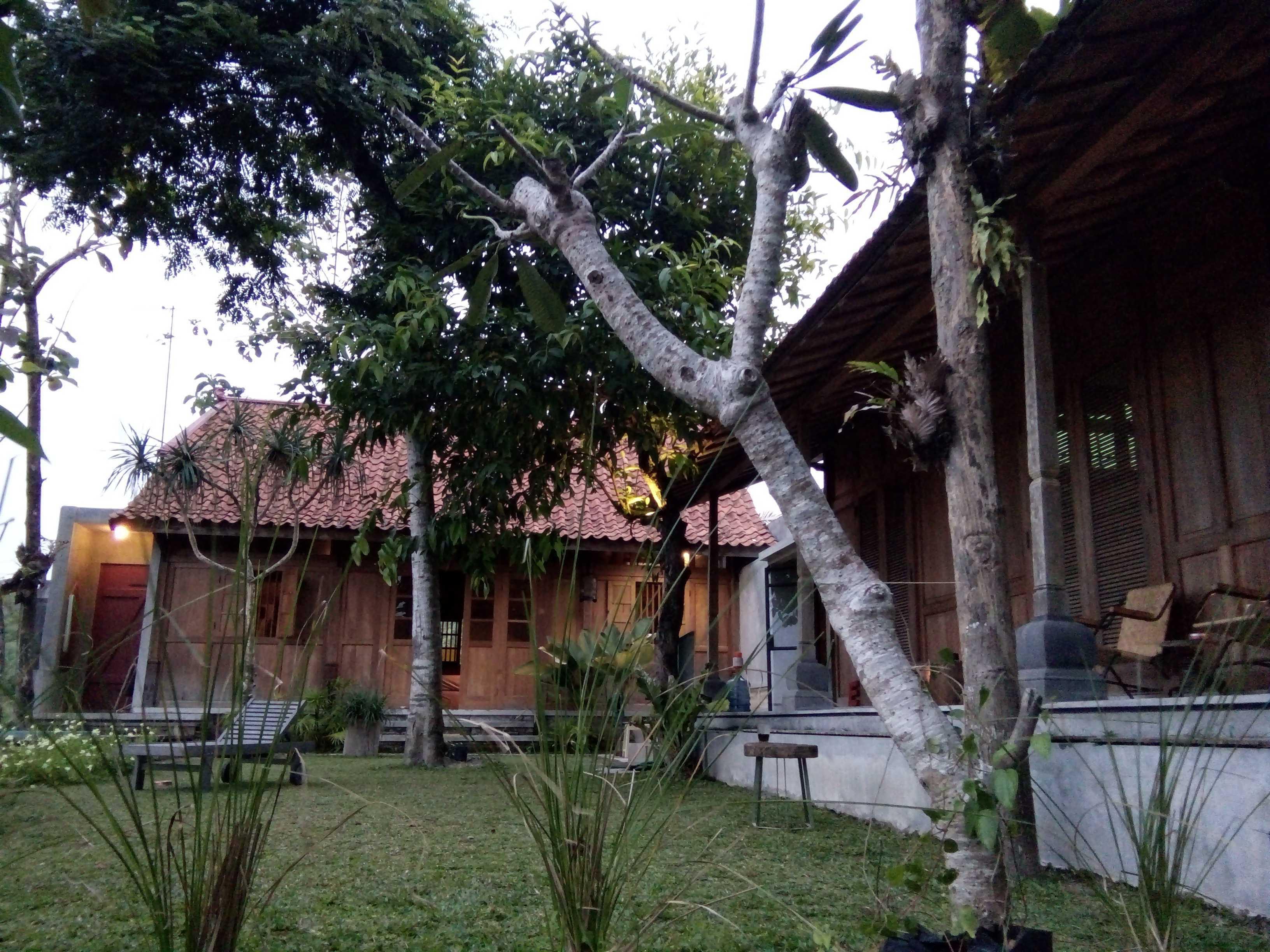 Aditya Wijaya / Studio Indirakasa Bangunjiwo House Yogyakarta Yogyakarta Halaman Tropis  16803