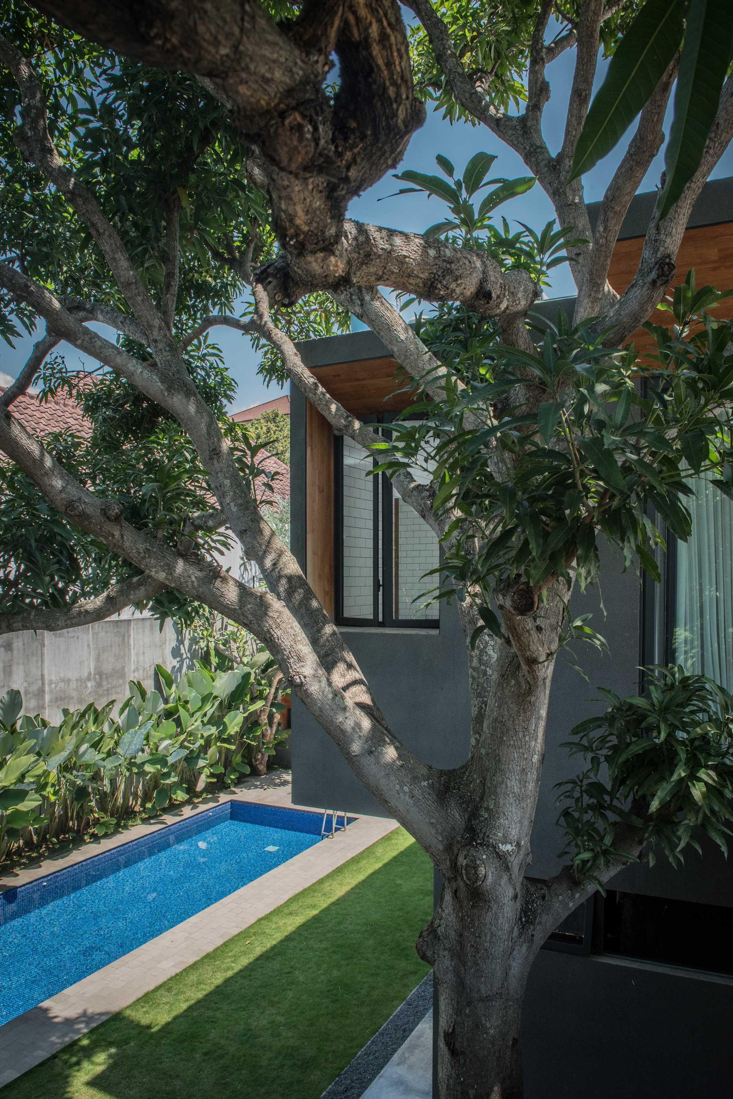 Tamara Wibowo House 1 Semarang, Semarang City, Central Java, Indonesia Semarang, Indonesia Swimming Pool View   17947