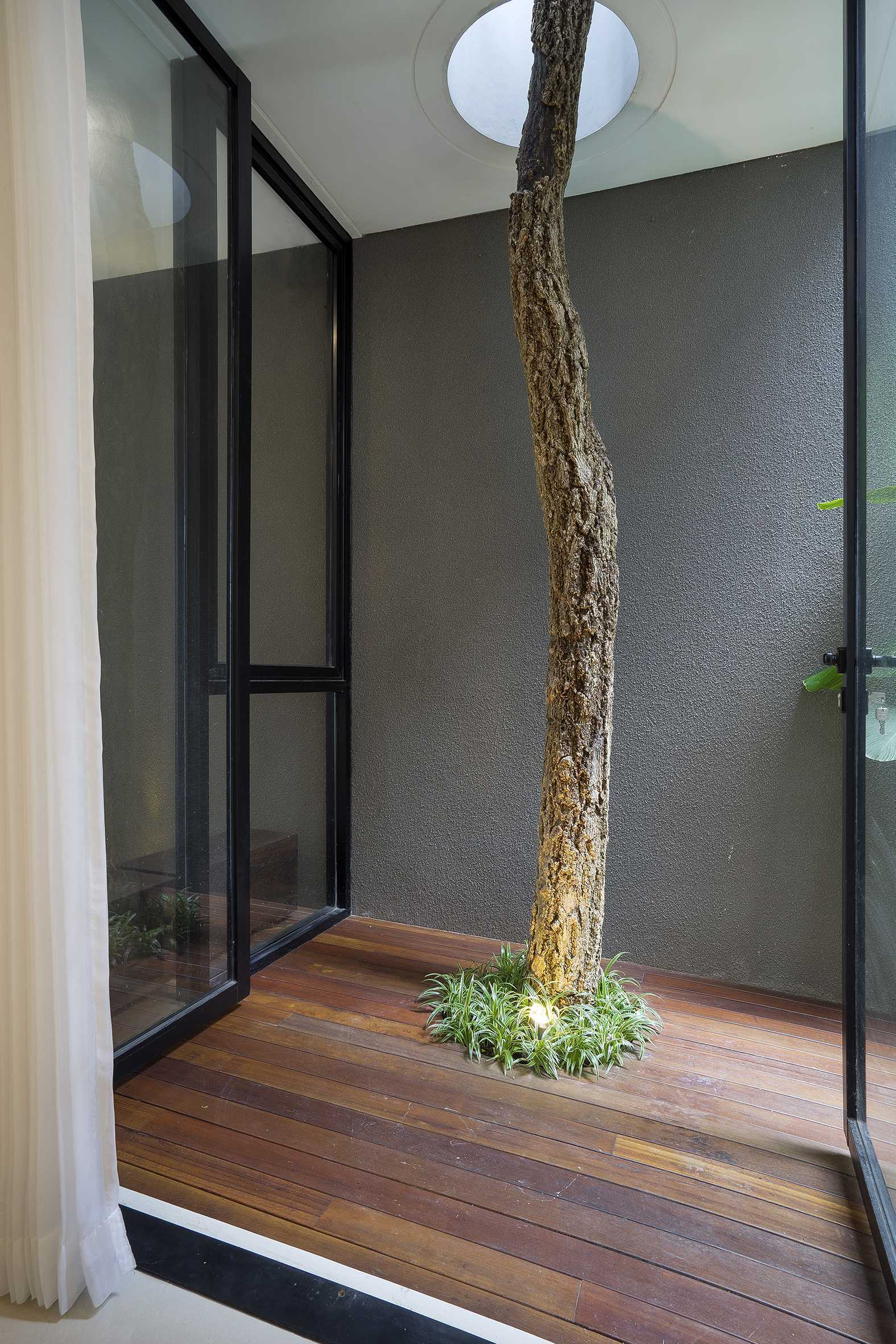 "Simple Projects Architecture ""s"" House Pakuwon Indah, Surabaya - Indonesia Pakuwon Indah, Surabaya - Indonesia Indoor Garden   32981"