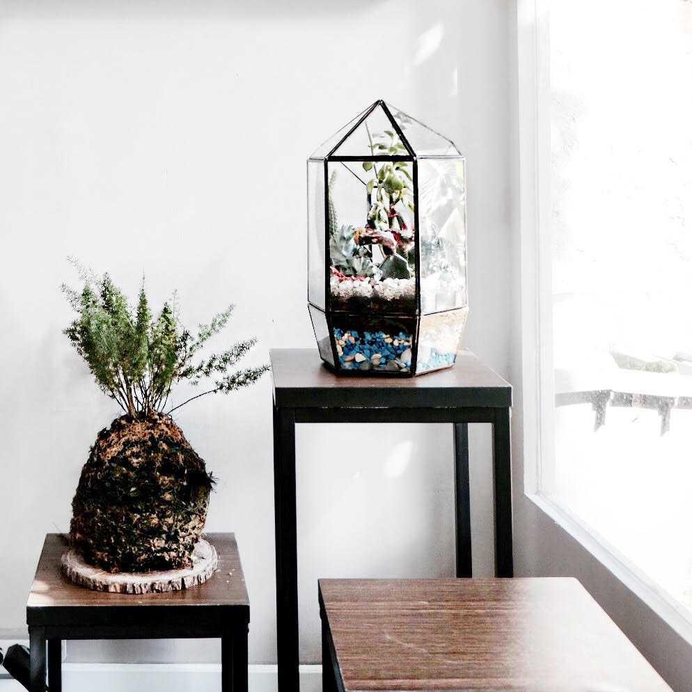 Ark.tekt Design Studio Sans Office Cilandak, Jakarta Selatan Cilandak, Jakarta Selatan Terrarium  Diletakan Di Pojok Ruang Meeting Untuk Mendapatkan Kesan Hijau Pada Ruang. 24137