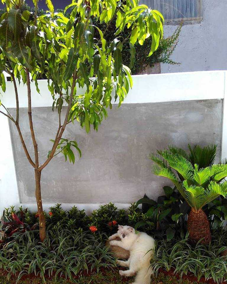Arch.co Cubic House Rempoa, Ciputat Tim., Kota Tangerang Selatan, Banten, Indonesia Rempoa, Ciputat Tim., Kota Tangerang Selatan, Banten, Indonesia 15439948101540897017419314097452806874869380N Kontemporer  45864