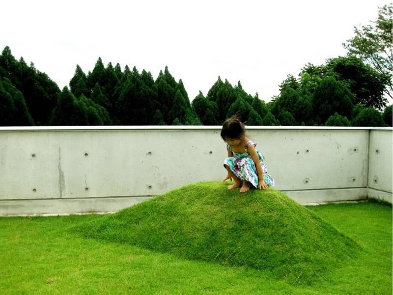 Salad Landscape Indonesia Building With Plants, Earth Mount Singapore  Singapore  Photo-2220  2220