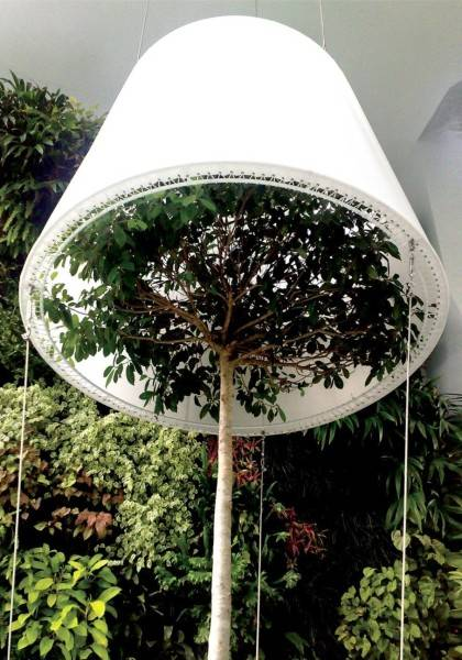 Salad Landscape Indonesia The Creative Use Of Plants  Singapore Singapore 12A  2223
