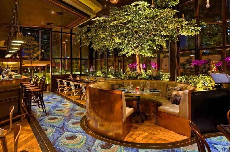 Leo Einstein Fransiscus Bottega Ristorante Mega Kuningan Mega Kuningan Seating Area Restaurant  7840