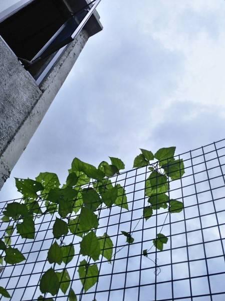 Akanoma Yu Sing Rumah Kecil At Ozone Residence Bintaro, South Jakarta, Indonesia Bintaro, South Jakarta, Indonesia Rumah-Kecil-17 Industrial 3964