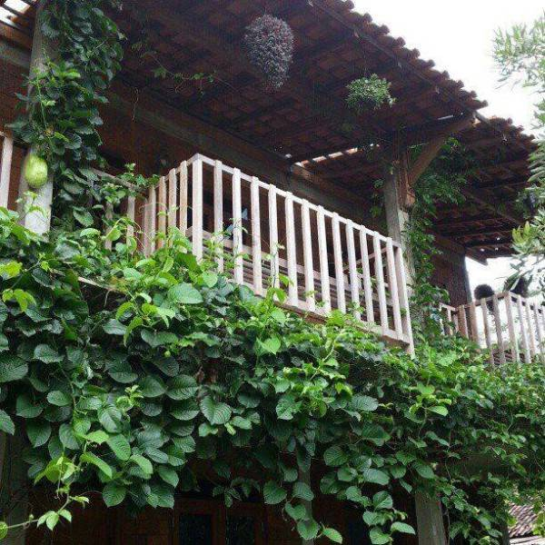 Akanoma Yu Sing Hotel Semeru At Semarang Middle Java Middle Java Tanaman-Rambat-Dan-Pot Kontemporer 4006