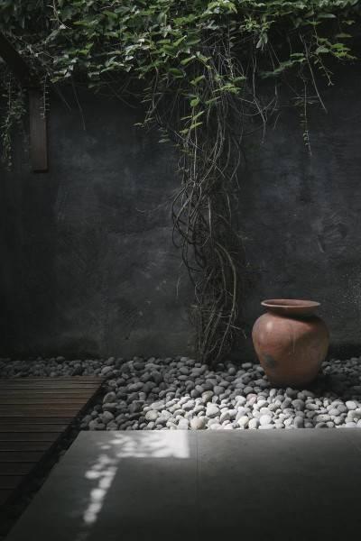 Foto inspirasi ide desain taman tropis Courtyard oleh Antony Liu + Ferry Ridwan / Studio TonTon di Arsitag
