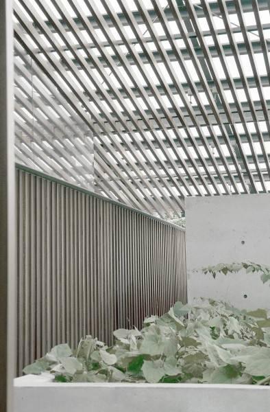 Foto inspirasi ide desain taman Bea house - exterior oleh Antony Liu + Ferry Ridwan / Studio TonTon di Arsitag