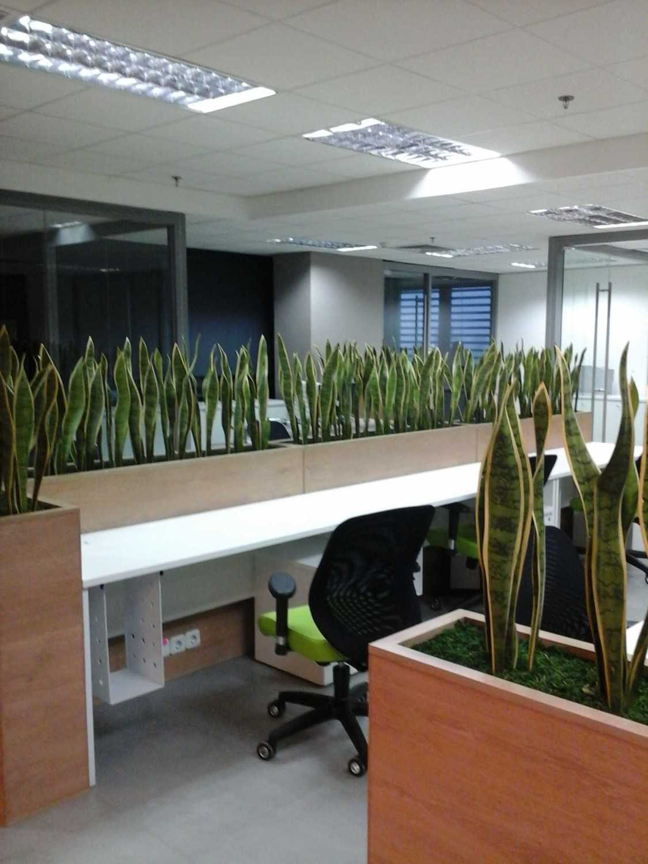 Pt. Indodesign Kreasi Mandiri Office Fresh Grow International Jakarta Jakarta Photo-28118 Modern 28118
