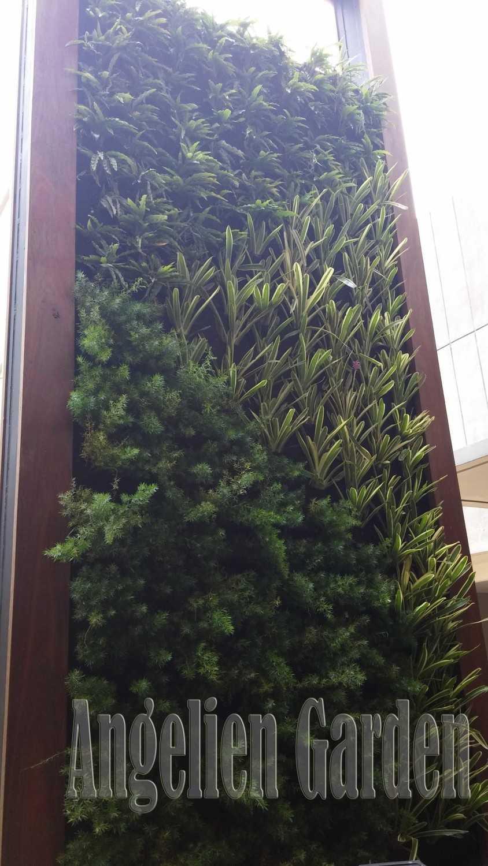 Reindy Vertical Garden 2 Face Bandung Bandung Ing3 Modern 28459