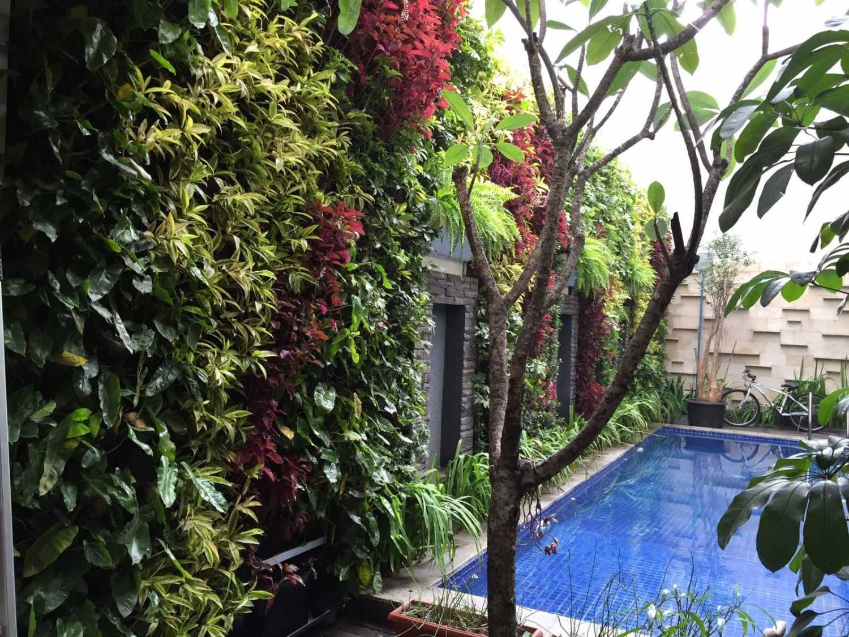 Aditya Wijaya / Studio Indirakasa Kalibata House Jakarta Jakarta Swimming Pool Area Tropis 15282