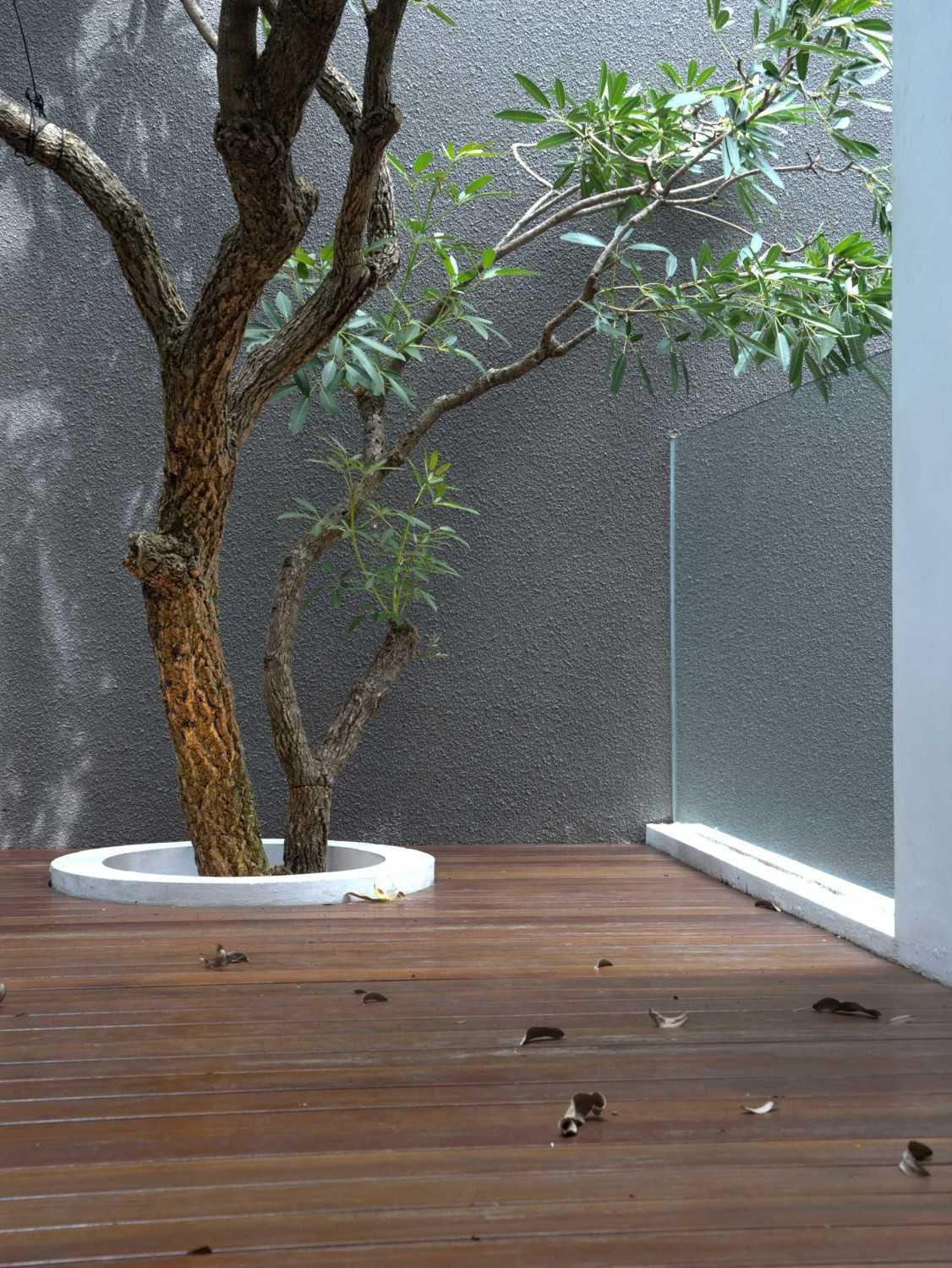 """Simple Projects Architecture """"s"""" House Pakuwon Indah, Surabaya - Indonesia Pakuwon Indah, Surabaya - Indonesia Courtyard  32976"""