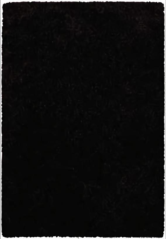 Variasi Luxury Shaggy 7001-020  FinishesFloor CoveringCarpeting 3