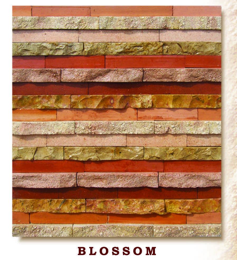 Variasi Charmaint  FinishesWall CoveringWall Tiles 2