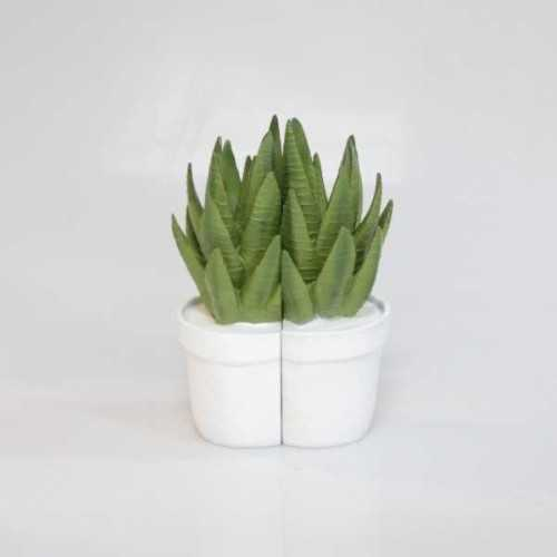 Foto produk  Book End Aloe Green di Arsitag