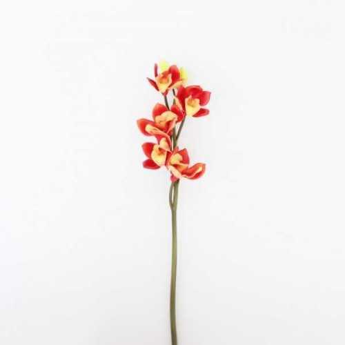 Foto produk  Flower Cymbidium Red di Arsitag