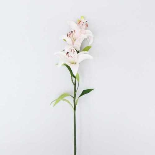 Flower Lily Bud Pink DécorPlant DecorationsArtificial Plants
