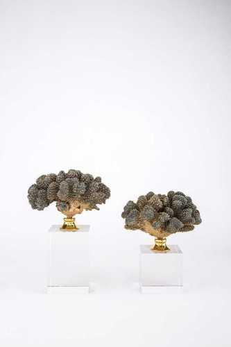 Wo-Coral-Bigsizesmallsize DécorHome DecorationsDecorative Objects