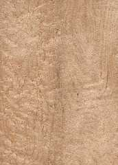 Foto produk  Sawn Timber-Bird Eye Maple di Arsitag