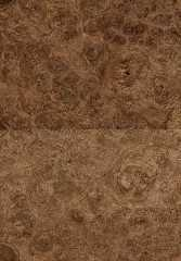 Foto produk  Sawn Timber-Oak Burl di Arsitag