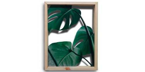 Foto produk Office Drawer Units 3 Monstera Leaves Acrylic Wall Decor di Arsitag
