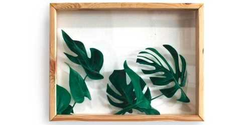 Foto produk Office Drawer Units 7 Monstera Leaves Acrylic Wall Decor di Arsitag